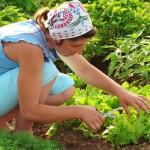 Health and beauty lusciousness - mylusciouslife.com - Home gardening