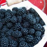 Luscious entertaining - mylusciouslife.com - Blackberries