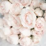 Romance and sensuality - mylusciouslife.com - pretty pale pink flowers