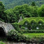 A luscious country life in England - mylusciouslife.com