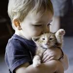 A luscious childhood - mylusciouslife.com - Cute kid holding kitten