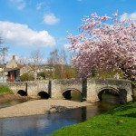 Beautiful houses and gardens - English village with old bridge and beautiful tree