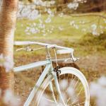 A luscious childhood - mylusciouslife.com - bicycle