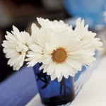 White Daisies in a Blue Vase