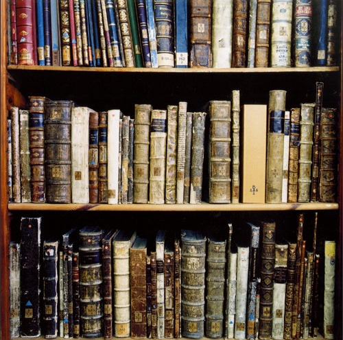 Books on library shelves - Luscious books and libraries
