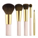 Aerin Brush Essentials Set