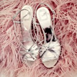 Photos of feathers - Luscious blog - feathery shoes