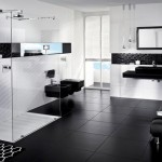 Decorating-ideas-for-a-bathroom-in-black-and-white