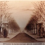 Greentree Entrance