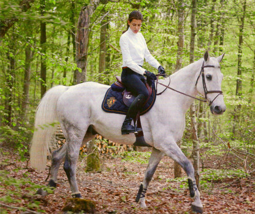 Charlotte Casiraghi, equestrian, on a white horse