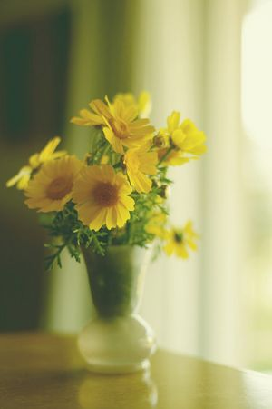 Photos of vases - glass vase with yellow flowers.jpg