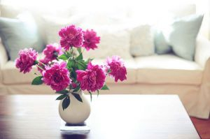 Photos of vases - white vase with bright pink peonies.jpg