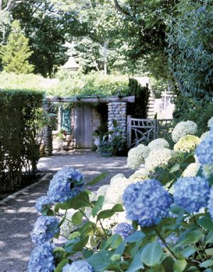 Blue and white photos - Countryliving.com - Nikko Blue and white Annabelle hydrangeas.jpg
