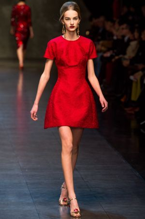 Dolce and Gabbana Fall 2013 RTW collection61.JPG