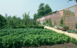 Prince Charles and his garden at Highgrove - vegetable garden.jpg