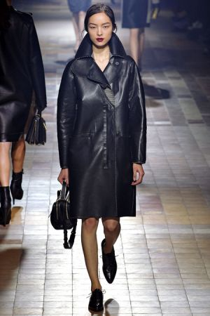 Lanvin Fall 2013 RTW collection26.JPG