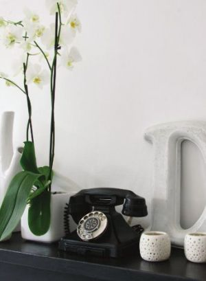 Vintage phone in Adore Home magazine.JPG