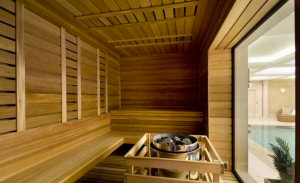 1 Cornwall Terrace Mews in London - Sauna.PNG
