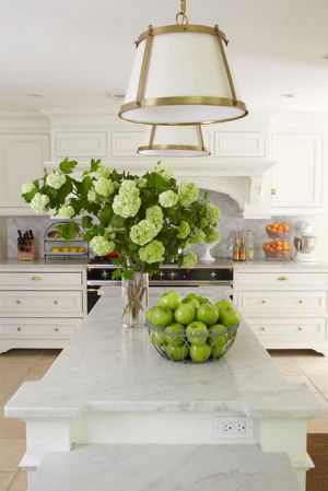 Ideas for a kitchen renovation pictures - clover mag 09 luscious kitchen.jpg
