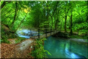 Luscious green scene - bride going over creek in the countryside.jpg