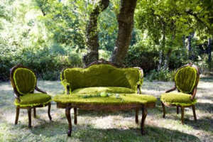 green grass covered lounge and chairs - picture-alison-events via mylusciouslife.png