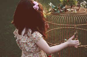 bow-cage-child-childhood-floral-flowers.jpg