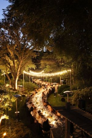 love the lights - outdoor celebrating - stylish outdoor dining.jpg