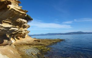 Tasmania-fossil-cliffs - luscious travel via mylusciouslife blog.jpg