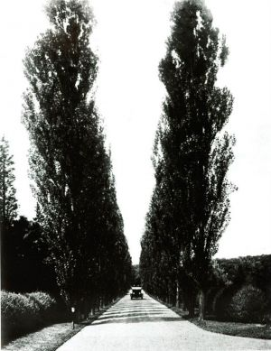 Black and white photo of vintage car on driveway.jpg