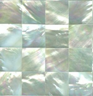Jewelry fashion interior design - inspired White Mother of Pearl Seahell Tile Squares.jpg