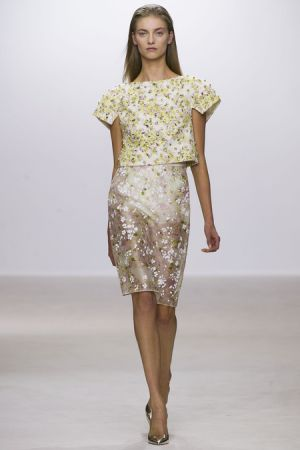 Floral designers - Giambattista Valli Spring 2013 RTW Collection.JPG