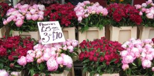 Floral interiors and fashion photos - Market stall of peonies.jpg