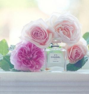 Floral photos - Floral fancy - mylusciouslife.com - Chanel and roses.jpg