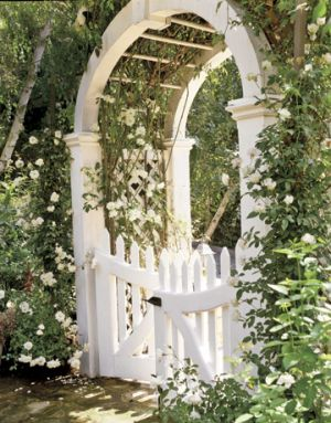 Floral pictures - Countryliving.com - front gate with Iceberg and Cecile Brunner roses.jpg