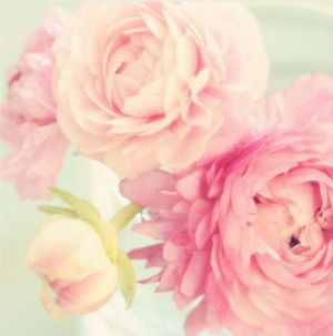 Flowers flowers - Floral fancy - mylusciouslife.com - pink flower mix.jpg