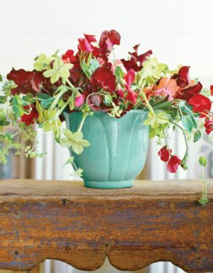 Images of floral -Flowers floral - Countryliving.com - Red Sweet Peas.jpg