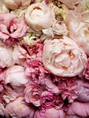 Images of floral designs - Floral creations - Flowers flowers - peonies.jpg