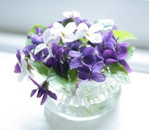 Images of flowers - Photos of floral fashion and decor - vase of violets.JPG