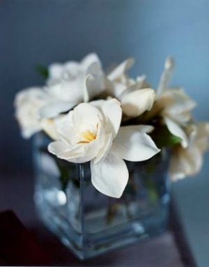 Photos of flowers - Floral fancy - mylusciouslife.com - romantic flowers in vase.jpg