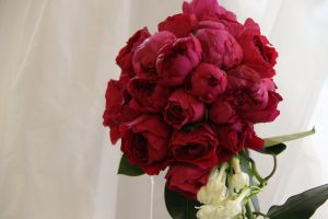 Pictures of flowers - Floral designers - blood red peony and rose bouquet.JPG