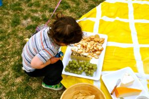 Family picnic - yellow pattern picnic blanket.jpg