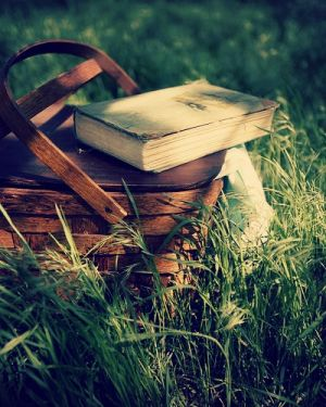 Picnic basket - vintage - with book.jpg