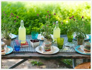 Picnic images - CamilleStyles_SummerPicnicTable.jpg