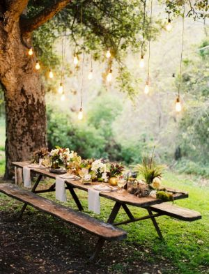 Picnic lighting and table setting decor in garden.jpg