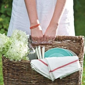 Picnic pictures - picnic basket.jpg