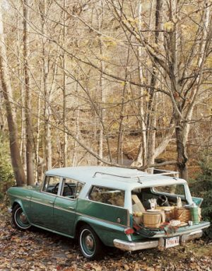 Picnic spot - vintage car with boot picnic.jpg