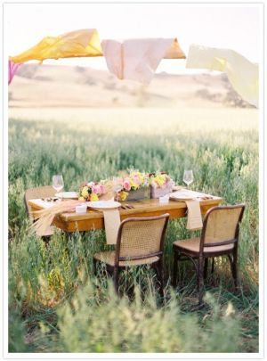 Picnic table plans - luscious picnics.jpg