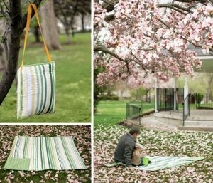 Picnic-Collage - folding picnic blanket.jpg
