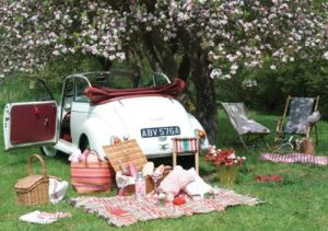 Romantic picnic ideas - picnic with vintage car and blossom.jpg