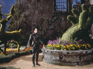 Edward Scissorhands DVD 1990.jpg